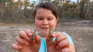 Yabbying with Holly the superstar yabby girl