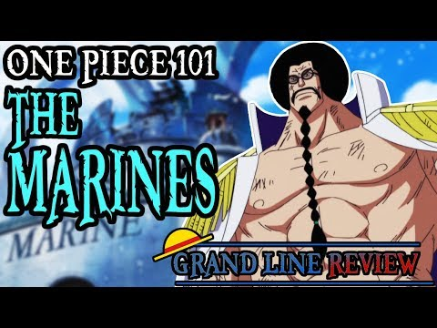 The Marines Explained   One Piece 101