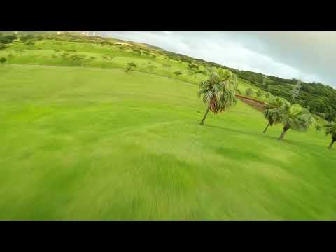 Фото FPV flying in Garden of Eden