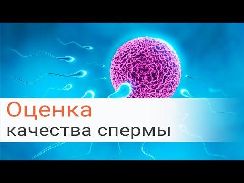 Оценка качества спермы МАР-тест Исследование ДНК фрагментации NASUM CAP-аккредитация