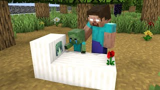 Monster School : Baby Zombie and Sad Life - Sad Story - Minecraft Animation