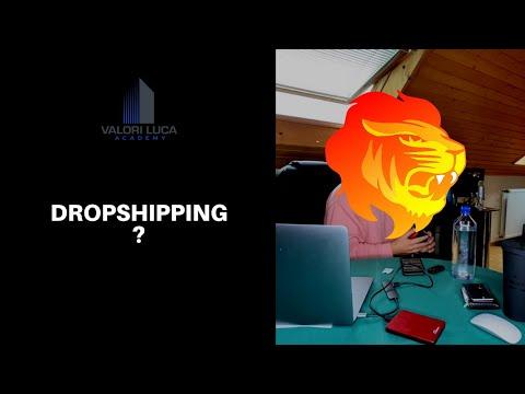 Fare soldi con il dropshipping ? Facciamo chiarezza.....