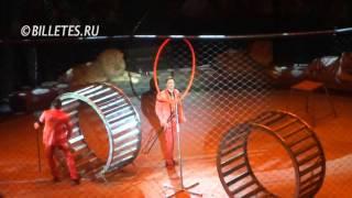 Эмоци и... Цирк на Проспекте Вернадского