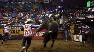 Why Bullfighting? - Crazy Jobs