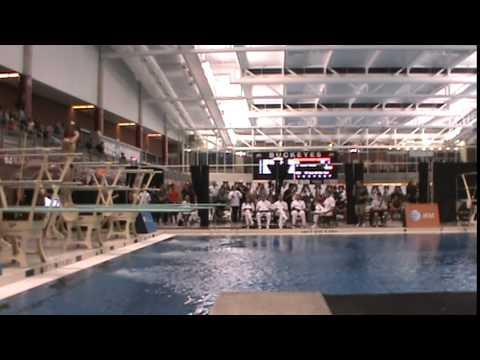 2014 USA Diving Winter National Championships Men's 1M Finals