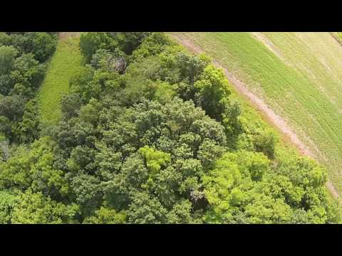 Property For Sale Crawford Co. IL Mossy Oak Properties AgriRec Land