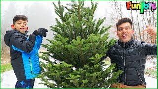 Getting a Christmas Tree from the Woods