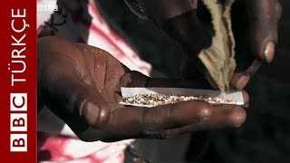 Nyaope: Güney Afrika'da onlarca can alan uyuşturucu