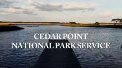Exploring Northeast Florida's Cedar Point Preserve