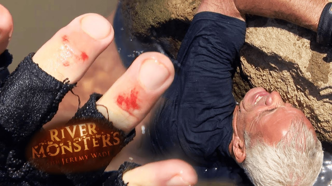 Jeremy Wade Bitten Hard By Catfish   CATFISH   River Monsters