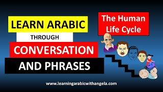 The Human Life Cycle- Learn Arabic Language for Beginners in One Minute- Beginners- Conversational