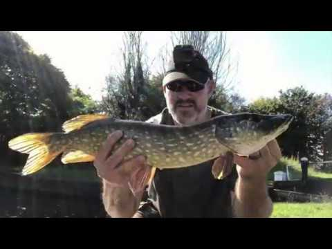Pike Fishing Canals Before Work