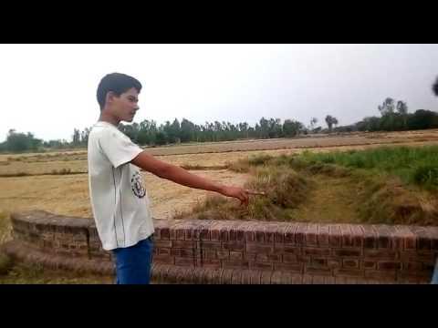Koilsa Azamgarh( pawani ke pawan singh)