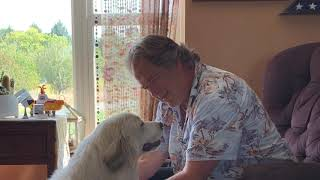 Great Pyrenees Puppy Lucy
