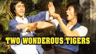 Wu Tang Collection - Two Wonderous Tigers
