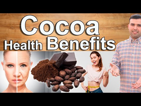 COCOA POWDER EVERY DAY Cocoa Powder and Dark Chocolate Health Benefits and Why You Should Have It