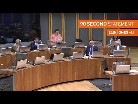 90 Seconds on schools in Ceredigion – Elin Jones AM