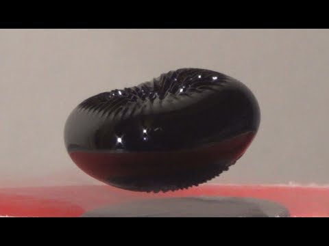 Levitating Magnetic Fluid