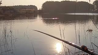 Когда не ловится любуемся природой таймлапс Краткий видеообзор рыбалки