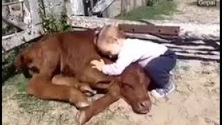 ❤ Niesamowita przyjaźń ludzi i zwierząt (Incredible friendship between people and animals) ❤