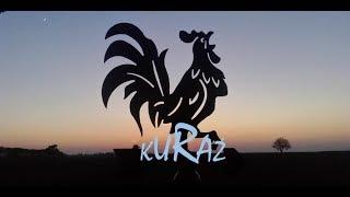 appenzellery, kury kosowskie, DZIEŃ Z KURAMI 5