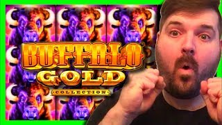 TOO MUCH WINNING! BUFFALO GOLD, WHALES OF CASH DELUXE & STINKIN' RICH W/ SDGuy1234