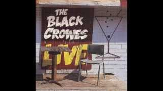 The Black Crowes Long Time Gone.mp3