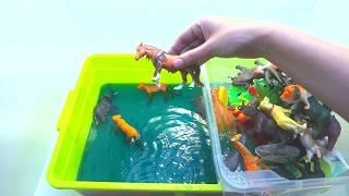 Игрушечные животные достаем из воды. Обучающее видео для детей | Животные зоопарка | Игрушки