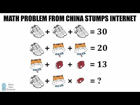 Chinese Math Homework Baffles Internet - Shoes, Cat, Whistle Puzzle Explained