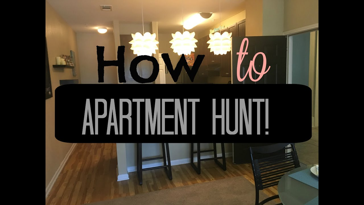 How To Find The Perfect First Apartment College Tips