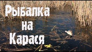 Рыбалка в Запорожье на карася.