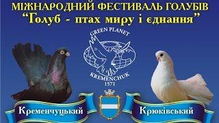 Кременчуг выставка фестиваль голубей птиц животных и растений 2015