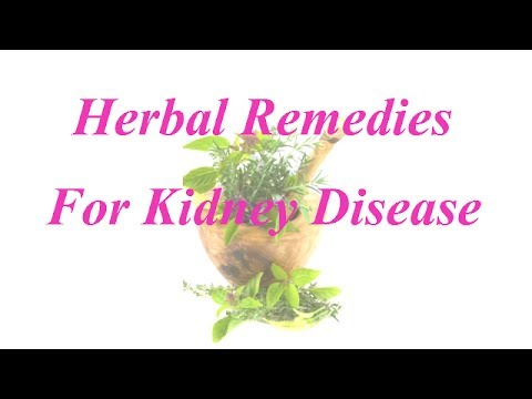 Herbal Remedies For Kidney Disease