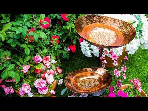 DIY Bird Bath - Home & Family