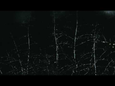 Crywolf - Lemniscate [The Place Between Sleeping And Awake]