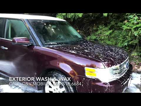 Pet Hair Removal and Detailing from Vehicles