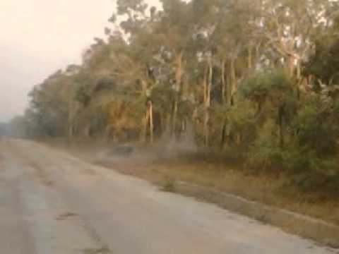 Maningrida highway to Jibena.. Video recorded by D.Williams..