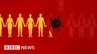 Coronavirus: What is social distancing? - BBC News