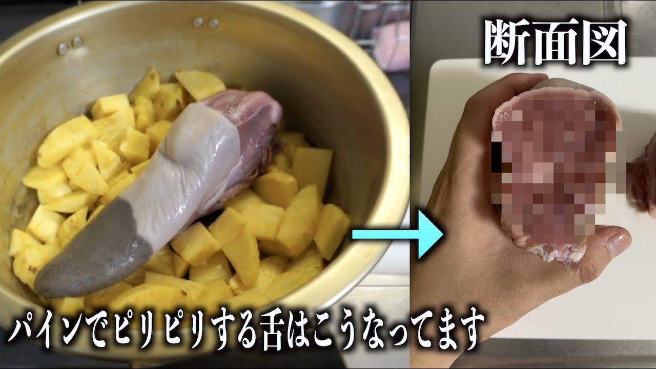 パイナップルを食べたとき舌がピリピリしてる原因はこうなってるからです