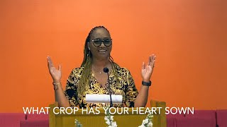 What Crop Has Your Heart Sown