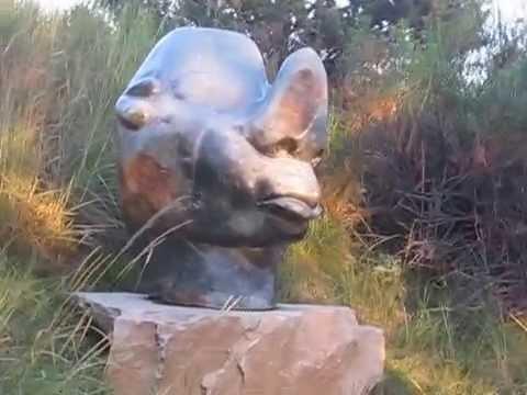 Video of a statue in Chapungu Sculpture Park