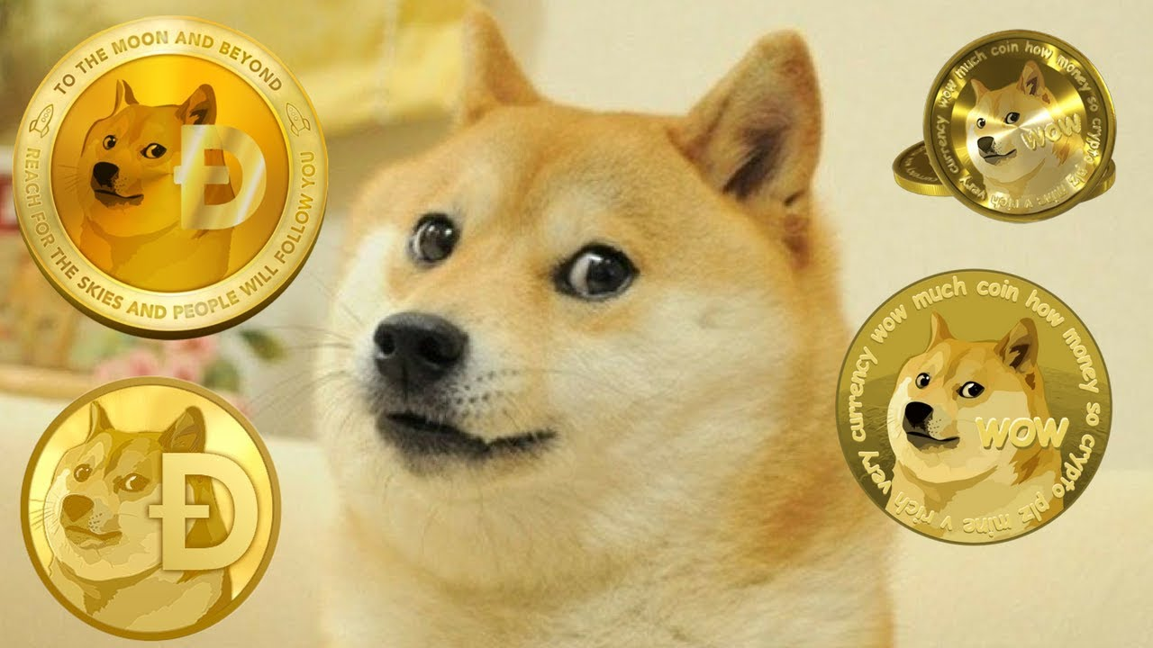 dogecoin - photo #7