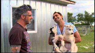 """Story Of Dominique Firetto And His Siberian Huskies """"les Tripeux By Real Béland"""" Part 1"""