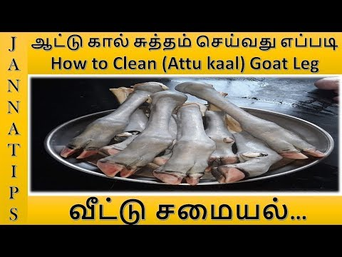 ஆட்டு கால் சுத்தம் செய்வது எப்படி/How to Clean(Attu kaal)Goat Leg Cleaning Special Recipe in Tamil