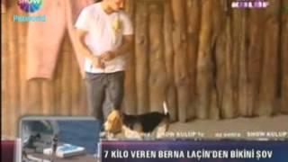 Beagle Cinsini Can Paksoy Show Kulüp Mikrofonlarına Anlattı