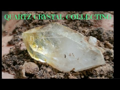 Quartz Crystal Digging! Virginia 2015