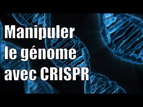 Modifier le génome avec CRISPR — Science étonnante #18