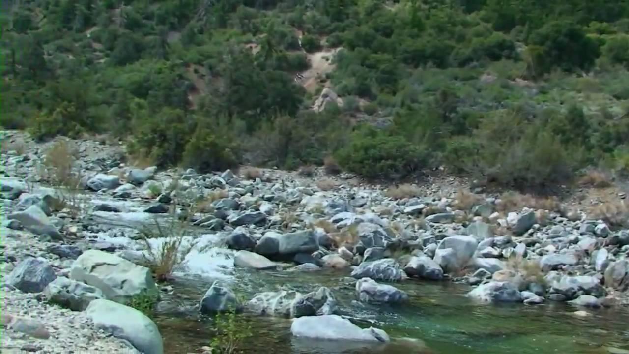 Jackson lake and big rock creek hd youtube for Falls lake fishing report