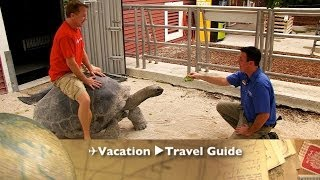 Miami Jungle Island ✈Travel Guide