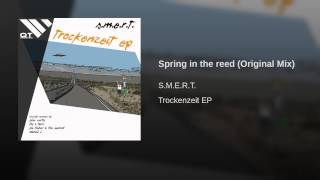 Spring in the reed (Original Mix)